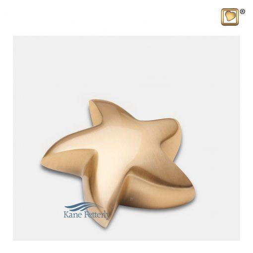 Gold star miniature urn